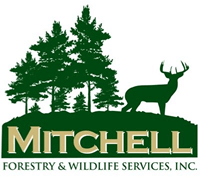 Jay Mitchell : Mitchell Forestry & Wildlife Resources, Inc
