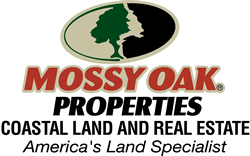 Mossy Oak Properties Coastal Land and Real Estate : Terrell Brazell