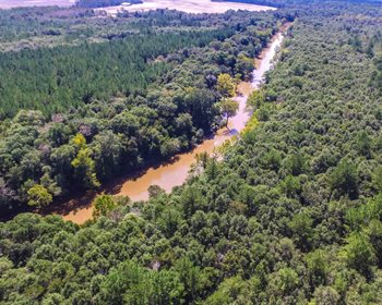 Hunter's Paradise on The Pea River