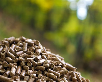 Linking Global Wood Pellet Demand with Timber Markets in the U.S. South