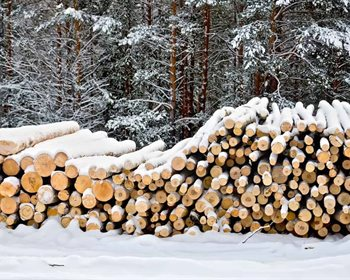 "My ""Local"" Timber Price is Your ""Local"" Wood Cost"