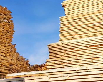 North American Softwood Lumber Production and the Value of Wood
