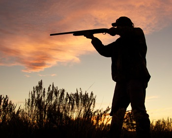 Pulse: Americans Support the Advancement of the Bipartisan Sportsmen's Act of 2015 in Senate