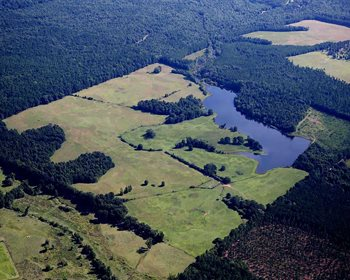 Swygert Lake Tract Offers Limitless Potential for Outdoor Enthusiasts