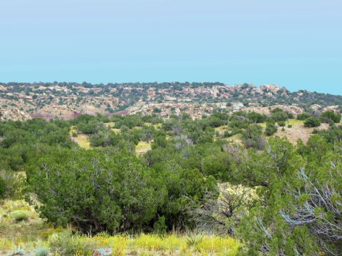 Quiet Wilderness Ranch $248 Mo. : St. Johns : Apache County : Arizona