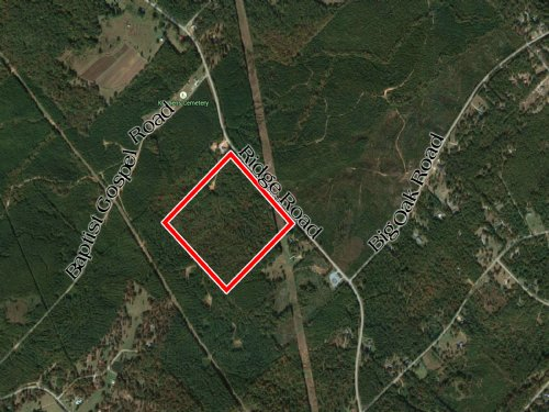 Ridge Road - 48 Acres : Macon : Twiggs County : Georgia