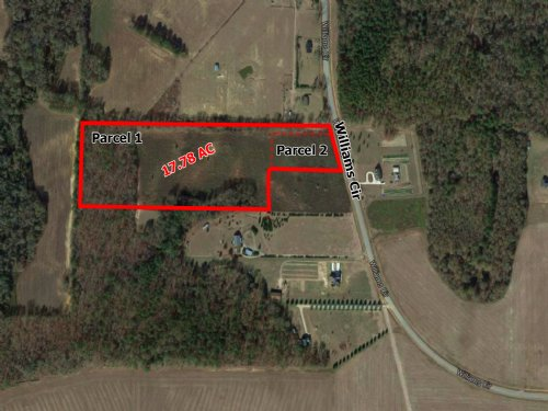 Reduced -Williams Cir - 17.78 Acres : Elko : Houston County : Georgia