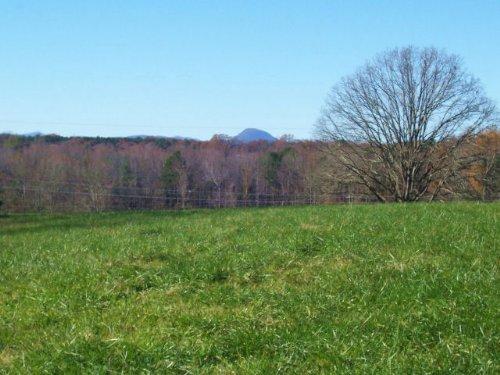 Farmland / Investment : Baldwin : Habersham County : Georgia