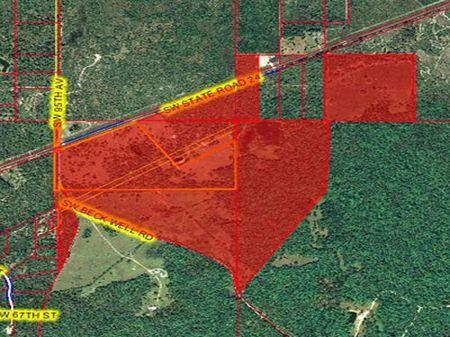 Cedar Key Ranch : Cedar Key : Levy County : Florida