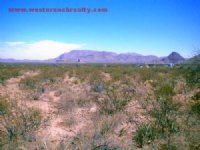 10.00 Acres Agriculture Land, Ranch