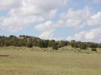 Az Wilderness Ranch $115 Mo.