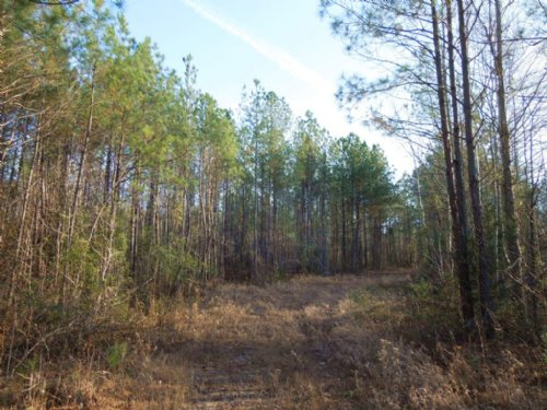 Beekman, Llc - St. Regis Tract : Louisburg : Franklin County : North Carolina