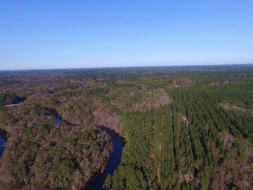 936 Acre Timber Investment : Lulaton : Brantley County : Georgia