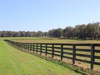 Oak Grove Farm : Madison : Madison County : Florida