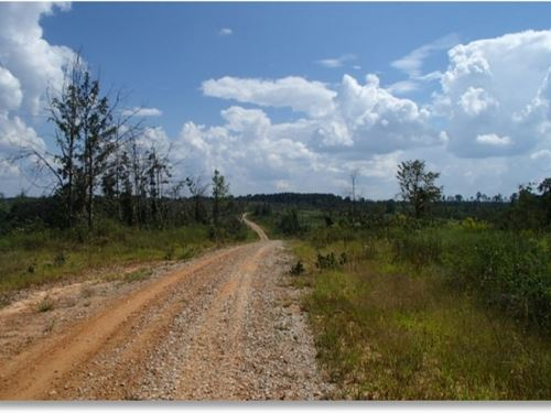 500 Acres In Chickasaw County In Ho : Houston : Chickasaw County : Mississippi