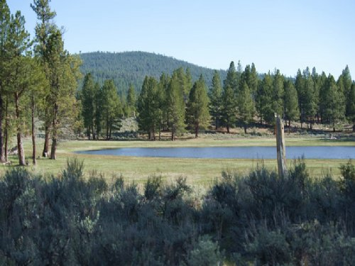 Overlook Ranch : Sprague River : Klamath County : Oregon