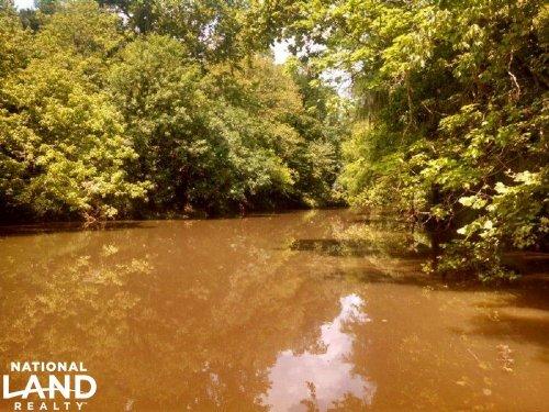 Pintlala Creek Frontage : Burkville : Lowndes County : Alabama