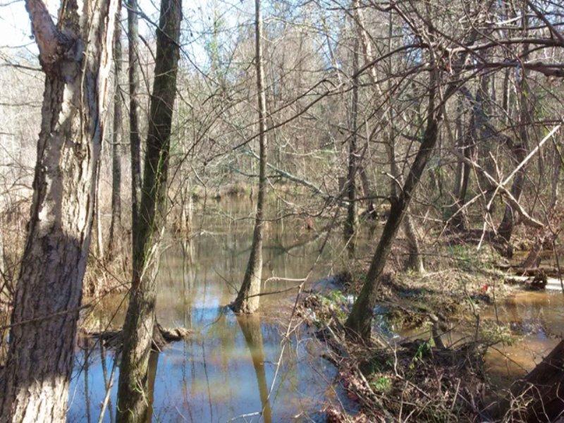 Tobesofkee Oaks : Macon : Bibb County : Georgia