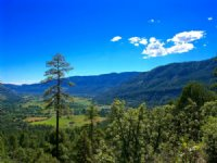 Red Tail Mountain Ranch Lot 1