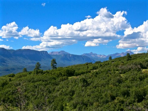 Red Tail Mountain Ranch Lot 14 : Durango : La Plata County : Colorado