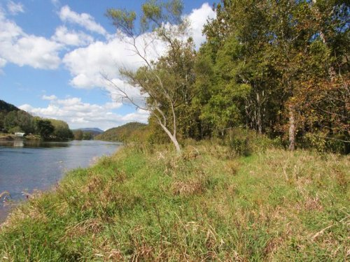 Acreage W/new River Frontage : Independence : Grayson County : Virginia