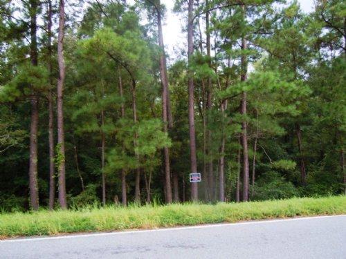 Glenns Branch Tract 4 : Statesboro : Bulloch County : Georgia