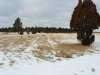 Tract 14 Hartland Ranches