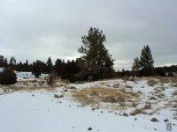 Tract 19 Hartland Ranches