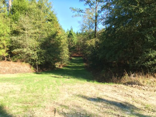 Turner Branch Tract : Jack : Coffee County : Alabama