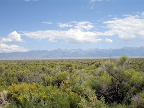 8131258, 160 Acres Of Peace And Qu : Saguache : Colorado
