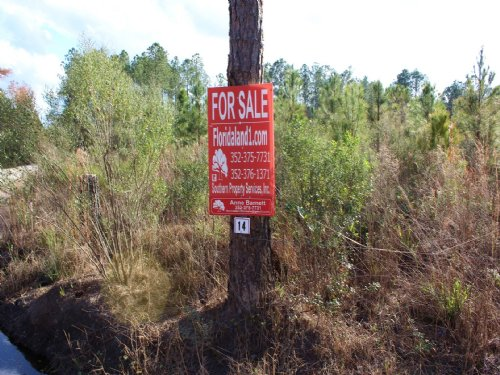 11 Acres - Lot 14 - Tall Pines S/d : Starke : Bradford County : Florida