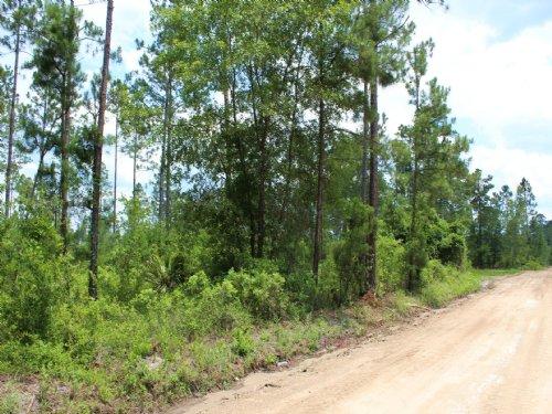 10.24 Acres - Lot 14 - Pop Bell Rd : Hilliard : Nassau County : Florida