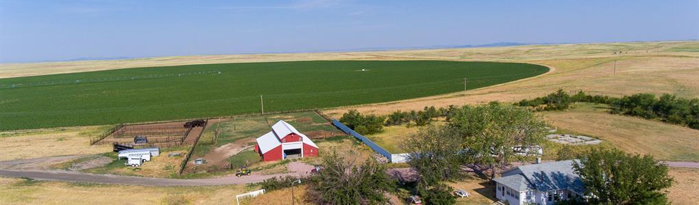 Muleshoe Land & Cattle : Torrington : Goshen County : Wyoming