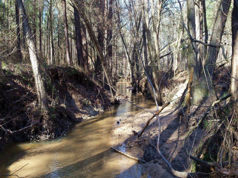 Callaway Tract : Rayle : Wilkes County : Georgia