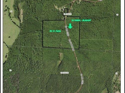 62 Acres In Attala : Kosciusko : Attala County : Mississippi