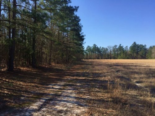 $118,200 - Dew Road, Marion : Marion : South Carolina