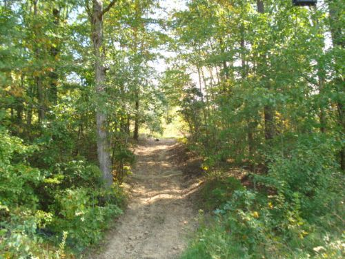 71 Acres On Creek : Spencer : Van Buren County : Tennessee
