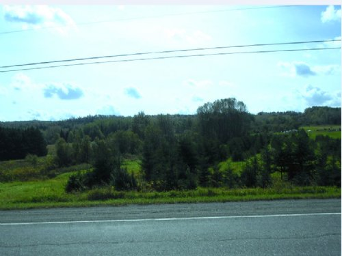 Vacant 53 +/- Acres Land For Sale : Grand Isle : Aroostook County : Maine