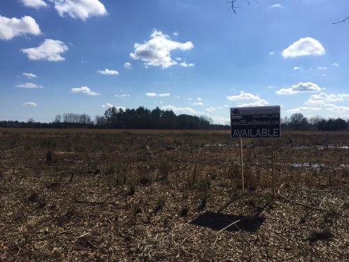 37.74 Acres Hunting Or Homesite : Bennettsville : Marlboro County : South Carolina