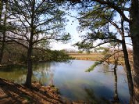 Mulberry River, Pond, & Pasture : Blountsville : Blount County : Alabama
