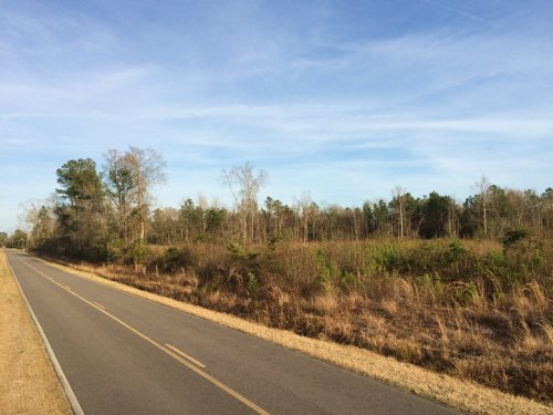Hwy 210 Tract : Currie : Pender County : North Carolina