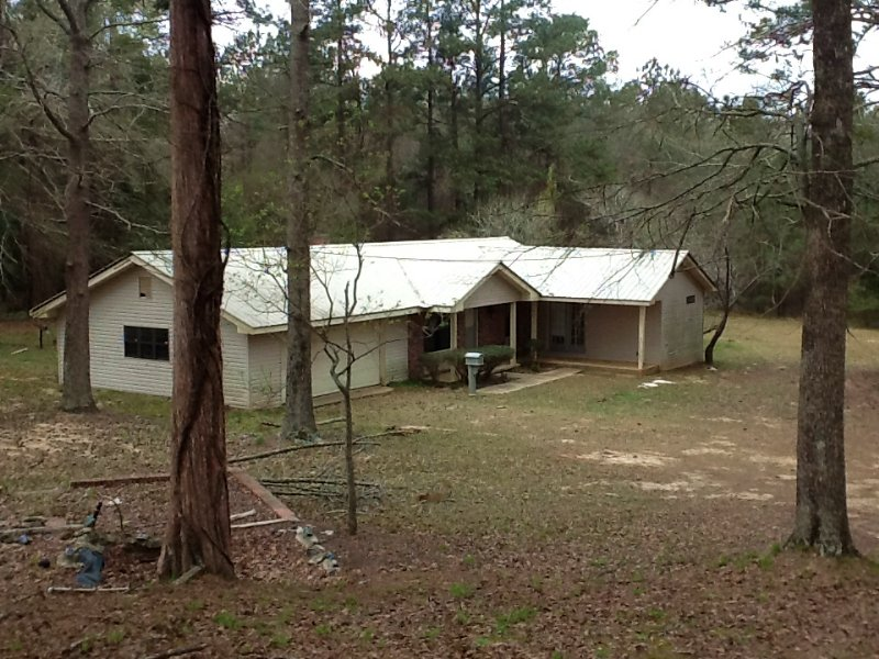 Fleetwood Tract With House : Glenwood : Pike County : Alabama