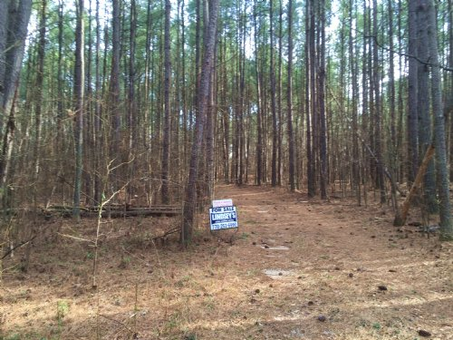 28+/- Wooded Acres On Welcome Road : Newnan : Coweta County : Georgia
