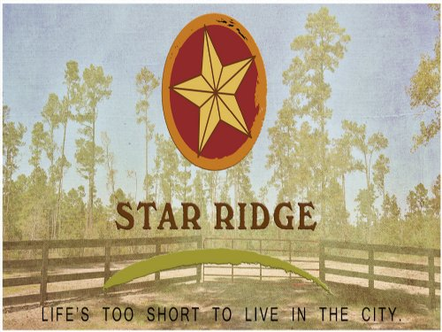 24.3 Acres Star Ridge : Livingston : Polk County : Texas