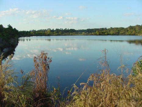 Bailey Mill Plantation - 3735 Acres : Ridgeland : Jasper County : South Carolina