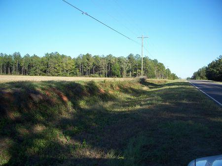 173.071 Acres : Shellman : Randolph County : Georgia