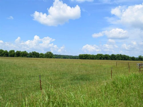 Rose Of Sharon Ranch 700 Acres +/- : Strang : Mayes County : Oklahoma