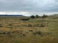 Butler Ranch