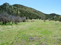 Forbes Canyon Ranch