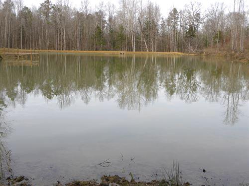 24-032 Bedsole Branch : Highland Home : Crenshaw County : Alabama